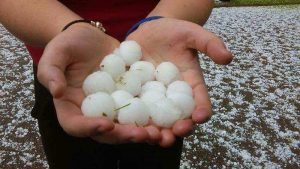 Hands holding golf ball sized hail.